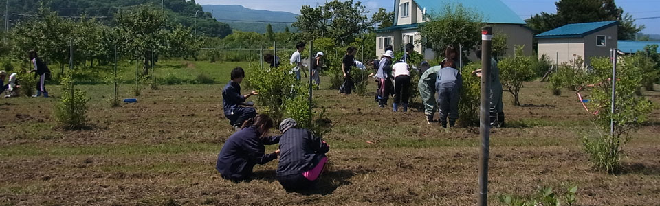 Hokkaido University, Graduate School of Environmental Science, The Agro-Ecosystem course