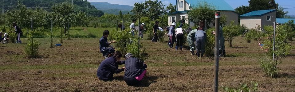 北大環境科学院耕地圏科学コース