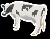 Livestock & Grassland