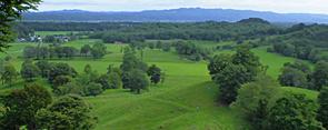 フィールドを使った森林環境と生態系保全に関する実践的教育共同利用拠点