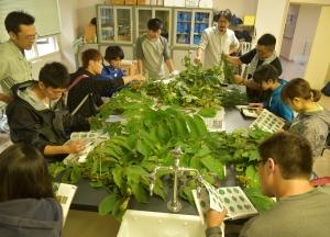 中川研究林