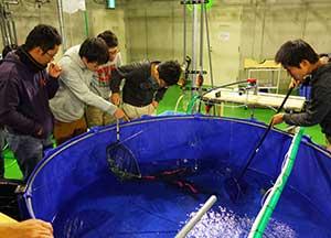 Laboratory of Marine Ecosystem Change Analysis