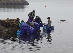 室蘭臨海実験所