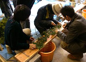 札幌研究林