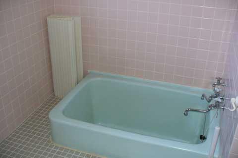 Teshio-bath2