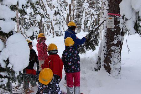 森のたんけん隊2018冬