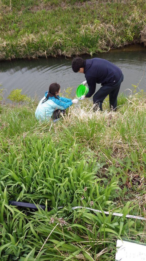 ニホンウナギ調査での採水@福島県
